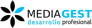 MEDIAGEST SOLUCIONES Y SERVICIOS S.L.
